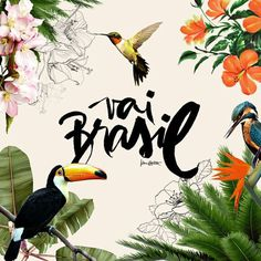 Brasil ! by Karen Hofstetter #script #hummingbird #floral #illustration #brush #typography