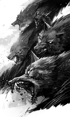 wolves by michalivan