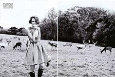 keira-knightley5.jpg (800×539) #deer #white #girl #black #and #editorial