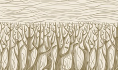 MT_2015_Fontacular_news_bkgd_Forest Gold-Creme day.png