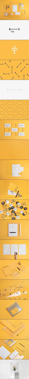 Branch Creative #brand #identity