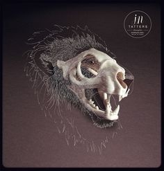SHOTOPOP LTD - DIGITAL ILLUSTRATION #skull #lion
