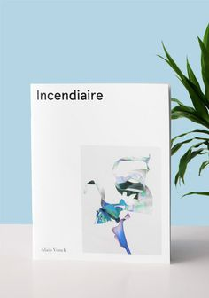 Incendiaire #fanzine #white #book #photography #flower #minimalist