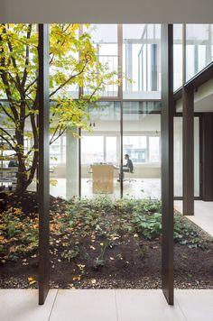 Patio garden. Penthouse Antwerp by Hans Verstuyft Architecten. #penthouseantwerp #hansverstuyftarchitecten #garden