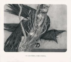 sides_web.jpg (1200×1048) #illustration #joaoruas #pencil #graphite