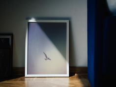 Artworks by Pale Grain #inspiration #frame #sweden #gteborg #print #seagull #artwork #framing