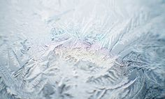 All sizes | Ice to Meet You | Flickr - Photo Sharing! #freezing #photography #ice #macro #winter