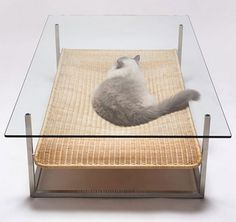 Some More Japanese Style For Your Moderncat moderncat :: cat products, cat toys, cat furniture, and more…all with modern style #lounger #cat