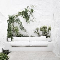 la buhardi · blog #interior #design #nature