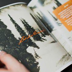 Bulldog Drummond | Eddie Bauer: Charting A Turnaround Path For A Troubled Brand