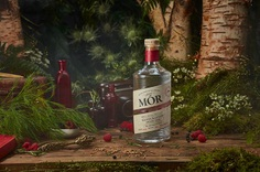 Mor Wild Berry Gin on Behance
