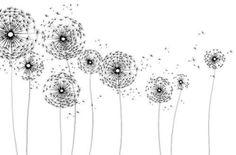 observando #dandelions