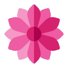 See more icon inspiration related to flower, gerbera, blossom, botanical, petals and nature on Flaticon.