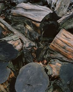 07-index.jpeg (520×650) #wood #photography