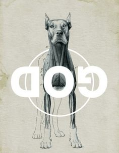 Illustration inspiration | #452 « From up North | Design inspiration & news