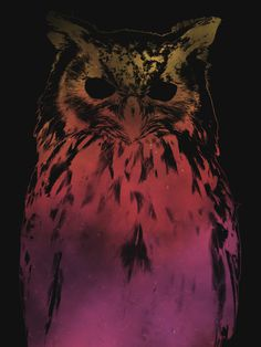 Hedwig #design #graphic #illustration #nature #animals