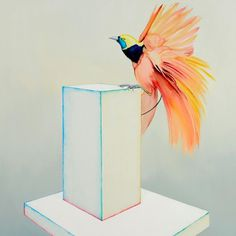 Julian Meagher   PICDIT #design #painting #art #flower #watercolor
