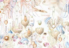 underwater, illustration, Bozka Illustrations