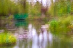 The garden of Monet #photography
