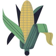 Icon created for Pyxera Global #icon #illustration #sweetcorn #vegetable #plant #food #corn #grow