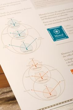 Un viaggio nel profumo - www.o-zone.it #information #infographics #print #infographic #icons #visualizing #info #illustration #graphics