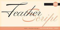 typelove_featherscript_01 #typo #typography
