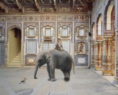 Karen Knorr #inspiration #photography #animals
