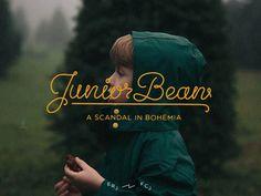 JuniorBean #script