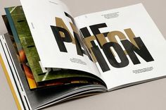 Accept & Proceed #spread #print #big #type