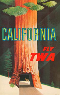 california, airline, poster, illustration