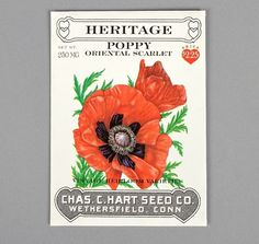 POPPY #vintage #type #packaging #painting #hearts