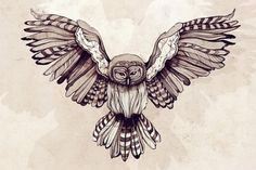 Artworks by ZSO » Design You Trust – Social design inspiration! #watercolor #owl #linework