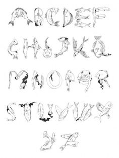 29caade226bbb4ad129c1599de8f1d24.jpg (525×699) #draw #type #alphabet #fish