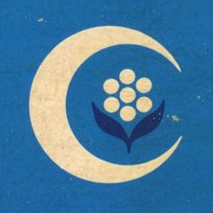 Draplin Design Co.: A Return To Junkin' #mark #sun #illustrated #illustration #vintage #flower #logo #blue