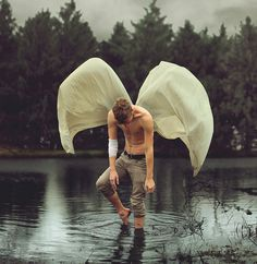 Frail Moth by Kyle Thompson