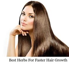 Best Herbs For faster Hair Growth