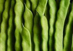 Green beans by Andy Grimshaw