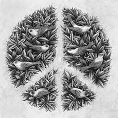 Peace #peace illustration