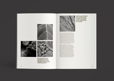 #editorial #design #layout #minimal #publication