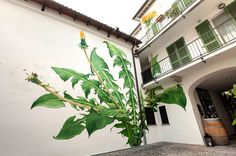 I Paint Weed Murals That Slowly Take Over The City (Gifs+Video) | Bored Panda #flower #art #street