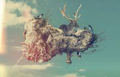 Zooo : Rafa Zubiria #zubira #photomontage #rafa