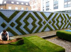 anna garforth moss graffiti designboom #moss