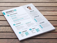 Johanes Resume - Free Clean PSD Resume Template for Job Seeker