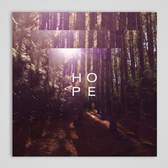Qwill and Resonance / Hope #album #packaging #outdoors #woods #cd #photography #music #trees #typography