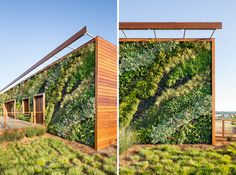 bcv architects bay meadows visitor center designboom #wall #planted