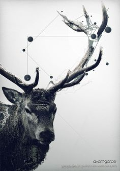 avantgarde on the Behance Network #art #poster
