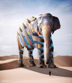 Dreamlike Animals: Mischievous Photo Manipulations by Ade Maolana