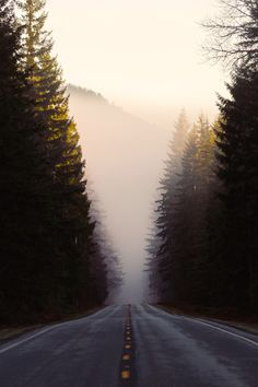 """""""If you don't know where you are going, any road will get you there."""" – Lewis Carroll"""