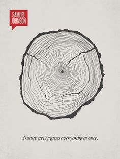 A Clever Visual Representation Of Famous Quotes | Marvelous #rings #trunk #tree #quote #design #graphic #wood #illustration #age #art #time #typography