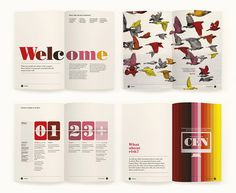 Contact Energy by Designworks #layout